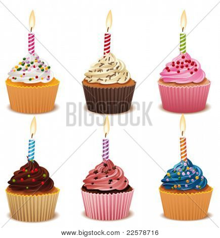 Set with birthday cupcakes. Vector