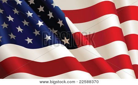 Bandera americana, color del vector Illustration