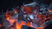 Burning Charcoal.hot Coals In The Fire.fire Woods And Hot Coal In A Grill.the Brazier Of Hot Coals.b poster