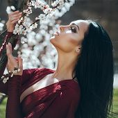 Sensual Woman At Blossoming Tree, Beauty. Girl With White Flower Blossom On Spring Day. Beauty, Look poster