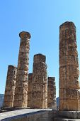 image of oracle  - Temple of Apollo at Delphi oracle archaeological site in Greece - JPG