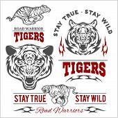 Tigers Custom Motors Club T-shirt Vector Logo On White Background. Premium Quality Bikers Band Logot poster