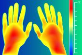 Thermal Imager Human Hands Vector Illustration. The Image Of A Male Arms Using Infrared Thermograph. poster