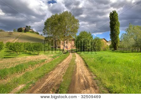 Rural unpaved road among green meadows leading toward winery under cloudy sky in Piedmont, Northern Italy.