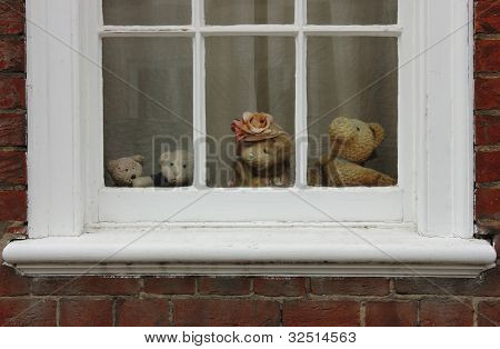 Family Of Teddy Bears On The Window.