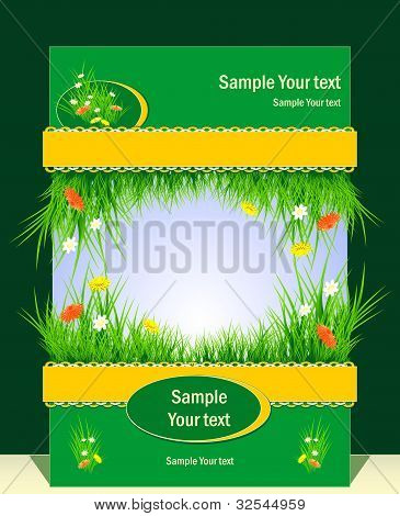 Frame with grass and  flowers for presentation
