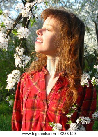 Enjoying Spring Sun