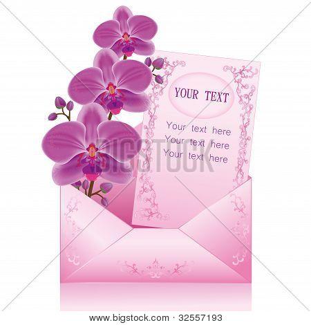 Flower Orchid In Envelope Over White