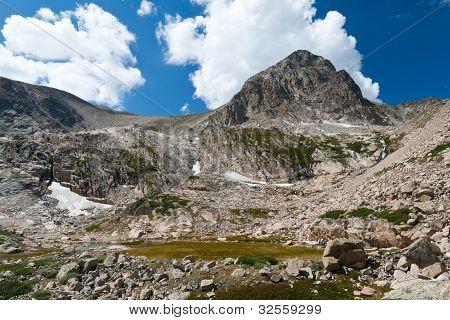 Alpine Tundra Landscape
