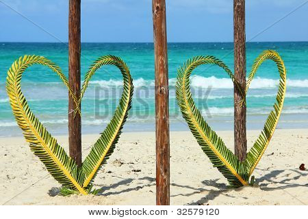 palm leaves in shape of heart.