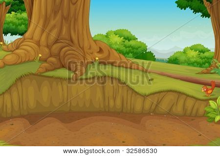 Illustration of a dirt path in the woods