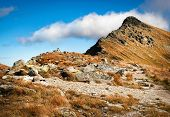 Seasonal Autumn Background Rocky Walkway To Rocky Mountain Peak poster