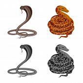 Vector Illustration Of Mammal And Danger Symbol. Collection Of Mammal And Medicine Stock Symbol For  poster