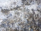 Small Stones On The Background Of Ice. Small Stones In The Ice. Small Stones In The Water poster