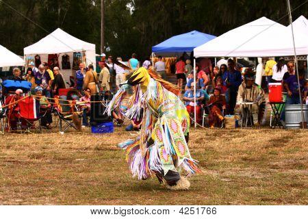 Native American Grass Dancer