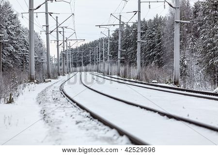 Empty Electric Railway Line In Winter Forest
