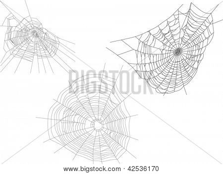 illustration with three spider webs isolated on white background