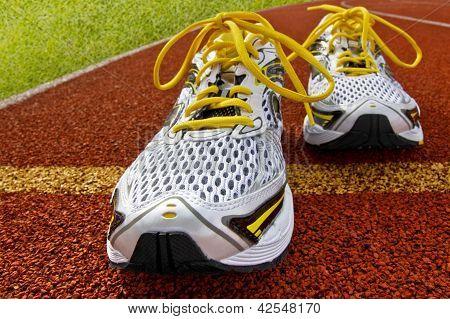 Sports Shoes Tartan