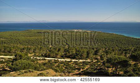 paisaje playa de bolonia