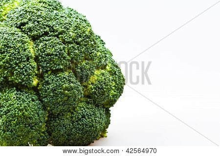 green part of the broccoli