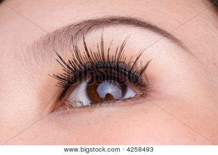 Macro Shot Of A Woman's Eye