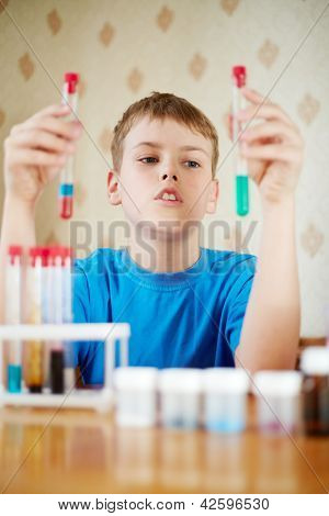 Boy in blue t-shirt sits at table with chemical reagents and looks at two test tubes, which he holds in his hands