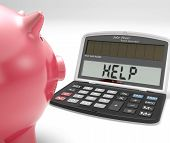pic of borrower  - Help Calculator Showing Borrow Savings And Budgeting - JPG