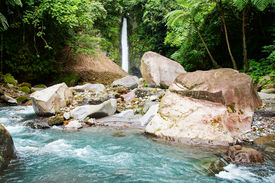 picture of camiguin  - Tropical waterfall in forest - JPG