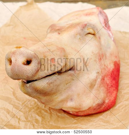 A Pig's Head