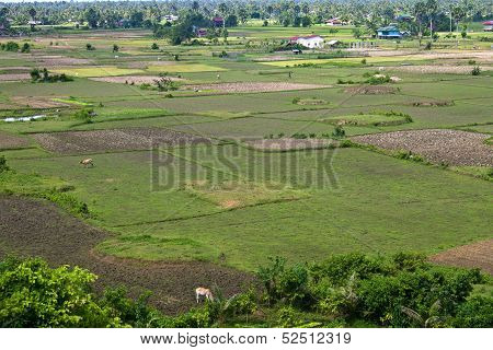 Aerial view of rural area