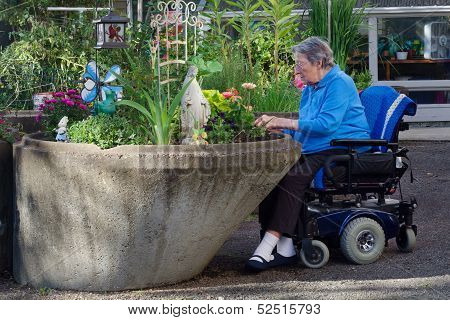 Assisted Living Gardener
