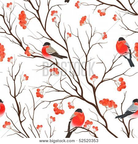 Seamless background with bullfinches sitting on branch of rowan, vector illustration.