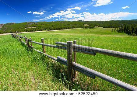 Bighorn National Forest Fenceline