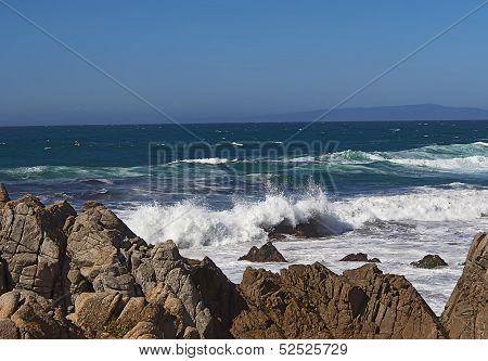 Pacific Coast. California.