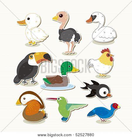 Cute Vector Bird Set