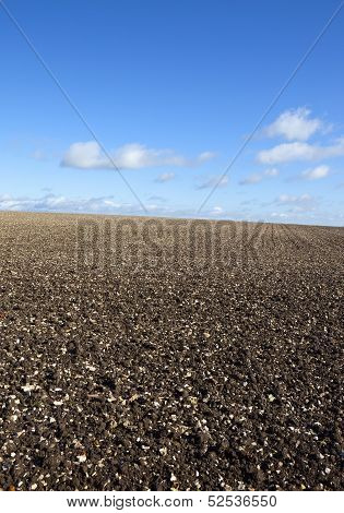 Chalky Plowed Field