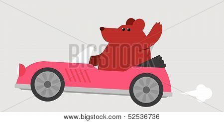 Bear driving a sports car