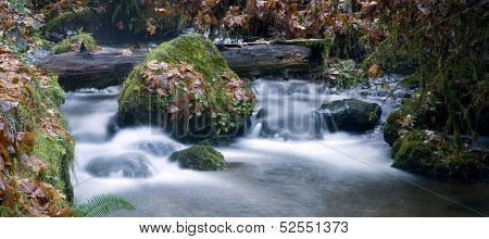 Long Exposure Water Flowing Down Stream Moss Covered Rocks