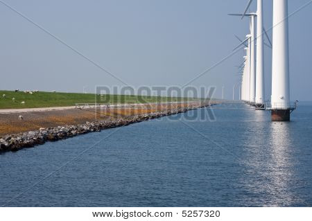 Windmills Along The Dike
