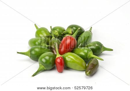 Chilis on white