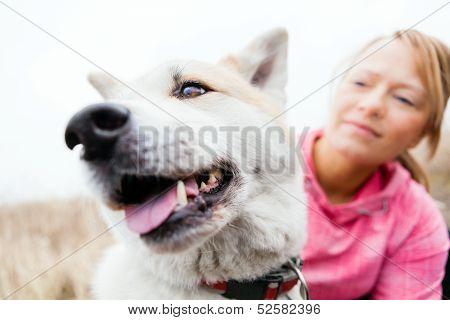 Woman And Dog Akita