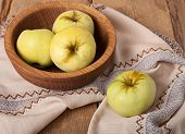 Antonovka Apples