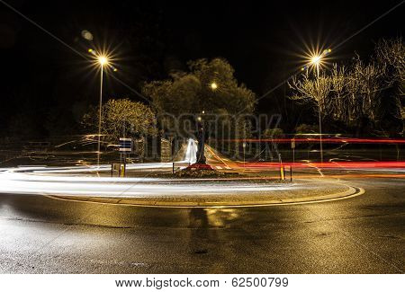 Traffic circle with olive tree