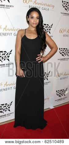LOS ANGELES - MAR 29:  Bianca Lawson at the Humane Society Of The United States 60th Anniversary Gala at Beverly Hilton Hotel on March 29, 2014 in Beverly Hills, CA