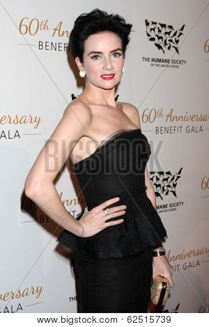 LOS ANGELES - MAR 29:  Victoria Summer at the Humane Society Of The United States 60th Anniversary Gala at Beverly Hilton Hotel on March 29, 2014 in Beverly Hills, CA