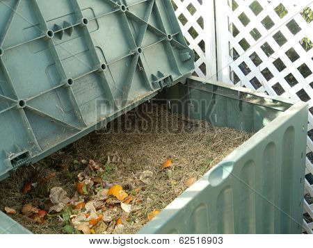 Green plastic compost bin full with lawn cut grass and domestic food scraps
