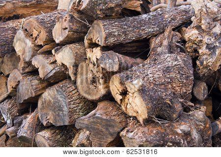 backgroud of wood