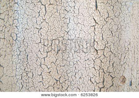 Cracked Peeling Paint On Rippled Surface