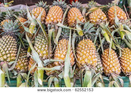 Group Of Fresh Pineapple( Ananases).