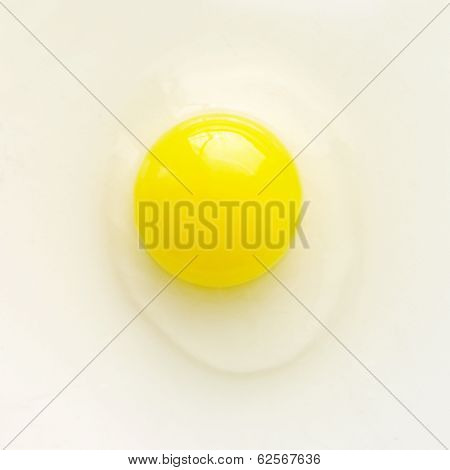 Yellow Egg.